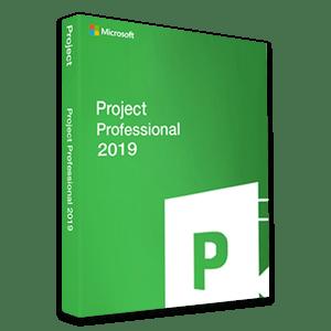 Microsoft Project Professional 2019 7